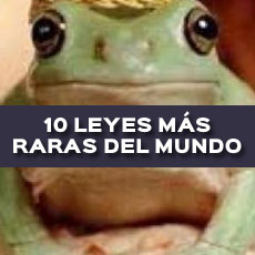 10 LEYES MAS RARAS DEL MUNDO