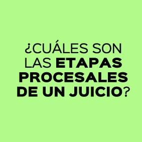 CUALES SON LAS ETAPAS PROCESALES DE UN JUICIO