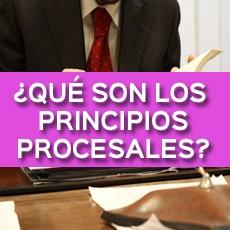 ¿QUÉ SON LOS PRINCIPIOS PROCESALES?