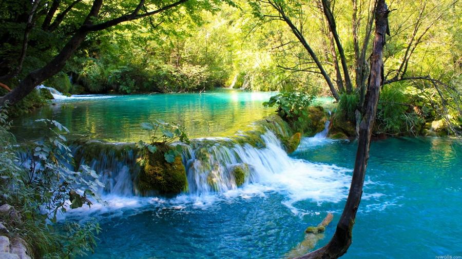 27. Agua Selva Tabasco