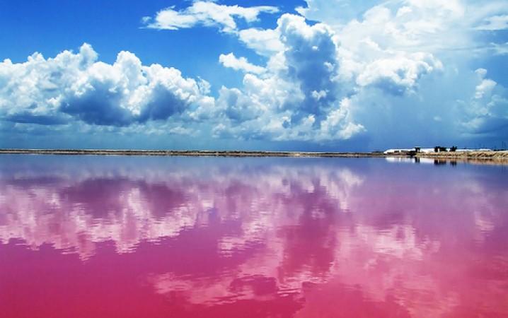 31. Las Coloradas Yucatan