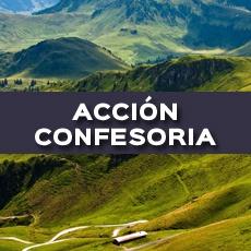 ACCION CONFESORIA