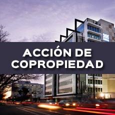 ACCION DE COPROPIEDAD