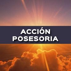 ACCION POSESORIA