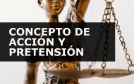CONCEPTO DE ACCIÓN Y PRETENSIÓN