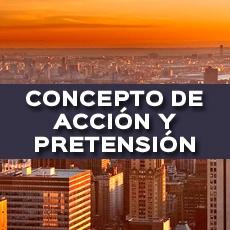 CONCEPTO DE ACCION Y PRETENSIÓN