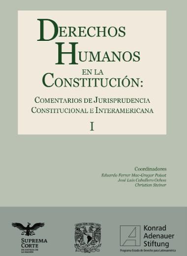 DERECHOS HUMANOS EN LA CONSTITUCIÓN - TOMO 1