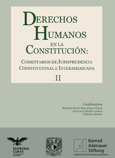 DERECHOS HUMANOS EN LA CONSTITUCIÓN - TOMO 2