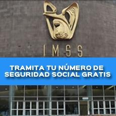 TRAMITA TU NÚMERO DE SEGURIDAD SOCIAL GRATIS