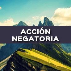 ACCIÓN NEGATORIA