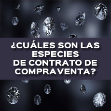 CUALES SON LAS ESPECIES DE CONTRATO DE COMPRAVENTA