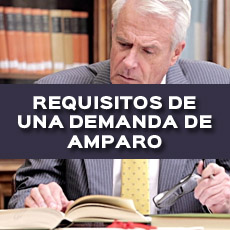 REQUISITOS DE UNA DEMANDA DE AMPARO